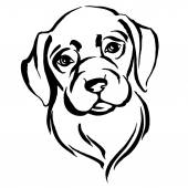 Hand drawn portrait of dog labrador. Black and white — Stock Vector