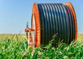 A huge coil of hose in the middle of the green field — Stock Photo