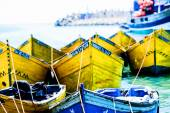 Prows of yellow boats tied to the shore — Stock Photo
