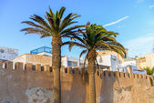 Two tall palm trees in front of a stone gate  — Stock Photo