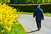 An old man walking along the road — Stock Photo
