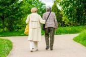 Senior ladyes walking in park — Stock Photo