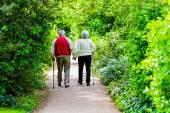 古いカップル strollingin 公園 — ストック写真