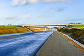 Asphalt road with white lines — Stock Photo