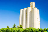 White grain warehouse — Stock Photo