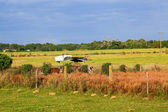 View of a farm gate leading into lush green countryside. — Stock Photo