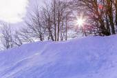 Snow skiing landscape of mountains in Vosges, France — Foto Stock