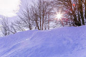 Snow skiing landscape of mountains in Vosges, France — 图库照片