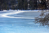 Frozen Longemer lake in the Vosges Mountain, France — Foto Stock