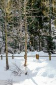 Frozen Longemer lake in the Vosges Mountain, France — Stockfoto