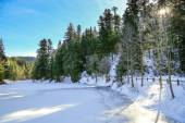 Frozen Longemer lake in the Vosges Mountain, France — Стоковое фото
