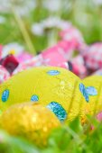 Colorful Easter egg deposited on the prairie grass — Stock Photo