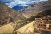 Peru, Pisac - Inca ruins in the sacred valley in the Peruvian An — Stock Photo