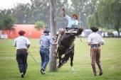 SAN ANTONIO DE ARECO, BUENOS AIRES, ARGENTINA - NOV 29: Gauchos — Stock Photo