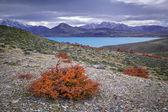 Perito Moreno National Park, Lake Belgrano, Patagonia, Argentina — ストック写真