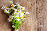 Daisies bouquet — Stock Photo