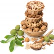 different kinds of nuts — Stock Photo #51898275
