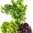 Raw green and red lettuce, bunch of celery. — Stock Photo #63992457