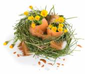 Easter eggs with flowers — Stock Photo