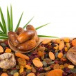 Mix nuts, dry fruits and pumpkin seeds — Stock Photo #66423701