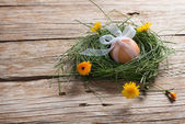 Close-up of egg with ribbon in a nest with flowers — Stock Photo