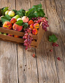 Various types of fruit stored in wooden box — Stock Photo
