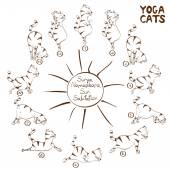Surya Namaskara konumunu Yoga yapıyor kedi — Stok Vektör
