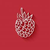 Raspberry on red background — Stock Vector