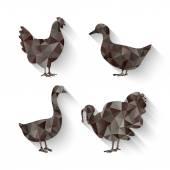 Domestic fowl symbol — Stock Vector