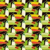 Toucans bird colorful seamless pattern — Stock Vector