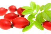 Rosehip berries with green leaves — Stock Photo