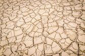 裂的土 — 图库照片