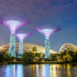 Night view of Supertree Grove at Gardens by the Bay in Singapore — Stock Photo #51844947
