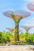 Garden by the bay — Stock Photo