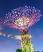 SINGAPORE - JUNE 26: Night view of Supertree Grove at Gardens by — Stock Photo