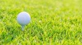 在绿色草地上的高尔夫球场球 — 图库照片