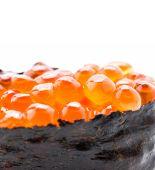Salmon egg sushi — Stockfoto