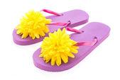 Flip flop sapatos de plástico da moda — Fotografia Stock