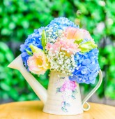 Bouquet flower Hydrangea — Stock Photo