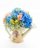 Bouquet flower Hydrangea isolated on white — Stock Photo