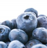 Blueberry basket — Stock Photo