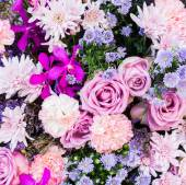 Flower backgrounds — Stock Photo