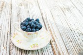 Blueberry cup — Stockfoto