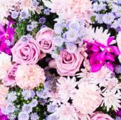 Sfondo floreale colorato — Foto Stock