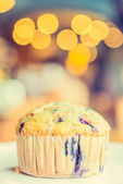 Blueberry muffin — Stock Photo