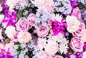 Fresh natural flowers — Stock Photo