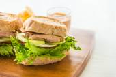 Chicken Sandwich and french fries — Stock Photo
