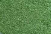 Green grass textures — Stock Photo