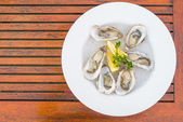 Fresh oysters shell with lemon — Stock Photo