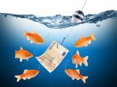 Fisch euro teaser concept — Stock Photo